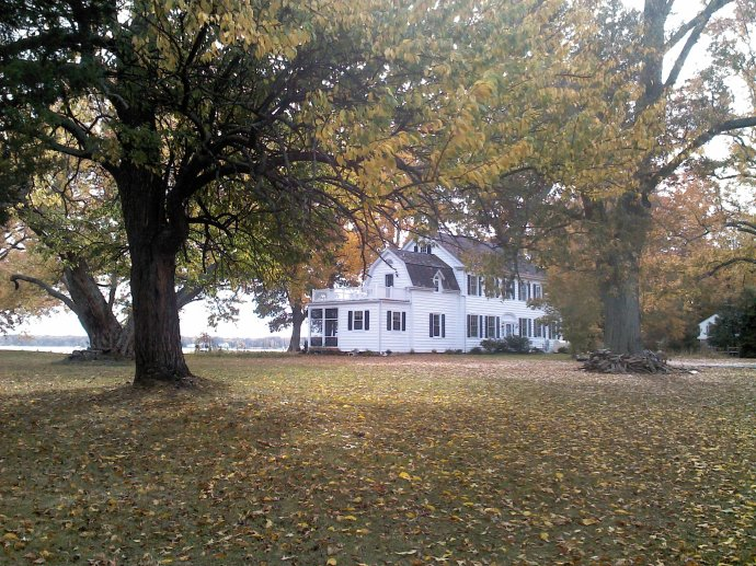 Bayfields in the Fall