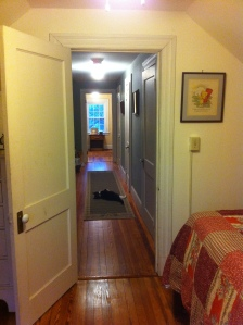 From the Rapunzel, the 3rd floor guest room at Bayfields Bed and Breakfast, looking down the hallway to Hansel and Gretel, the other 3rd floor guest room.  The cat you see on the floor is Kiki, our elusive cat, who only shows up when we have guests.